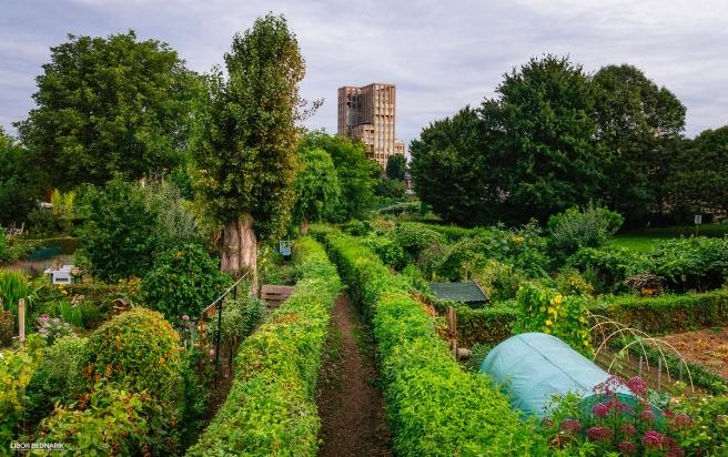 Sittard-Garden-Saving-The-Gardens.jpg